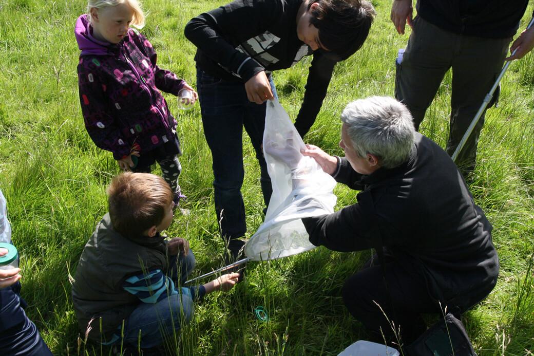 Bi-safari for børn. Foto: © Jørgen Gram